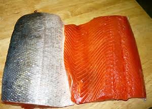 saumon frais